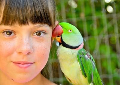girl_parrot